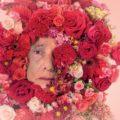 Flores não desculpam